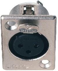 JBSYSTEMS 110 NC-3-FDL (D-size) female XLR 3 pin chassis